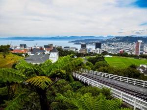 Wellington_[Jan2016]_0016