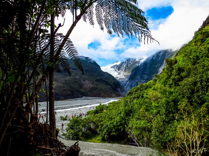 Franz Josef Glacier_[Jan2016]_0329